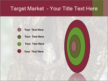 Little Owl PowerPoint Template - Slide 84