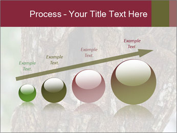 Little Owl PowerPoint Template - Slide 87