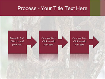 Little Owl PowerPoint Template - Slide 88
