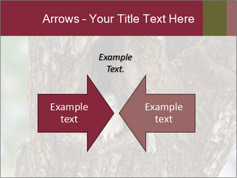 Little Owl PowerPoint Templates - Slide 90