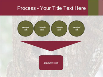 Little Owl PowerPoint Template - Slide 93
