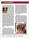 0000090572 Word Template - Page 3