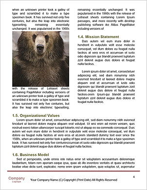 0000090572 Word Template - Page 4