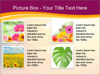 Sunflower PowerPoint Templates - Slide 14