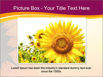 Sunflower PowerPoint Template - Slide 15