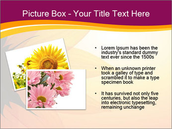 Sunflower PowerPoint Template - Slide 20