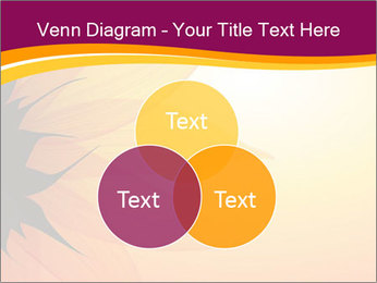 Sunflower PowerPoint Template - Slide 33