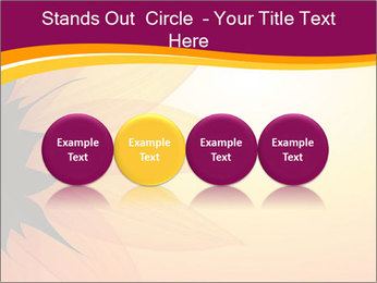 Sunflower PowerPoint Template - Slide 76
