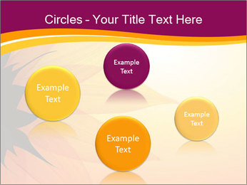 Sunflower PowerPoint Templates - Slide 77