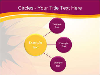 Sunflower PowerPoint Template - Slide 79