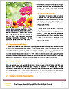 0000090573 Word Template - Page 4