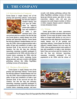 0000090575 Word Template - Page 3