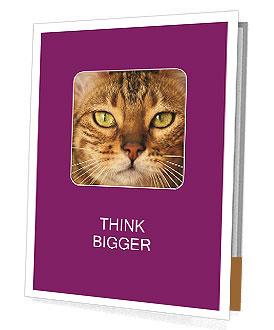 0000090576 Presentation Folder