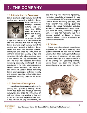 0000090576 Word Template - Page 3