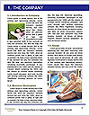 0000090577 Word Template - Page 3
