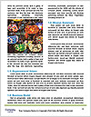0000090584 Word Template - Page 4