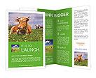 0000090585 Brochure Template