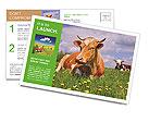 0000090585 Postcard Template