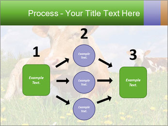 Cow on a summer PowerPoint Templates - Slide 92
