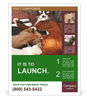 0000090586 Poster Templates