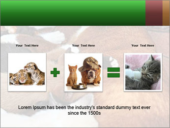 Cat PowerPoint Template - Slide 22
