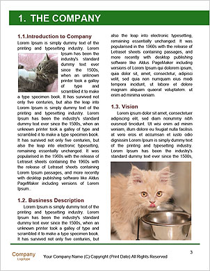 0000090586 Word Template - Page 3