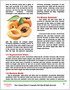 0000090592 Word Template - Page 4