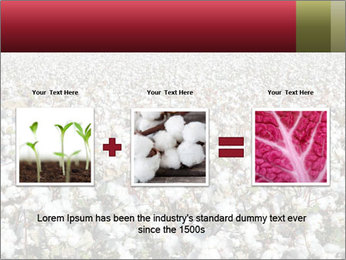 Fields of Cotton PowerPoint Template - Slide 22