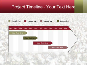 Fields of Cotton PowerPoint Template - Slide 25