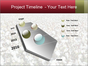 Fields of Cotton PowerPoint Template - Slide 26