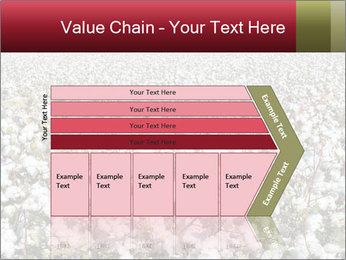 Fields of Cotton PowerPoint Template - Slide 27