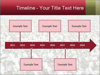 Fields of Cotton PowerPoint Templates - Slide 28