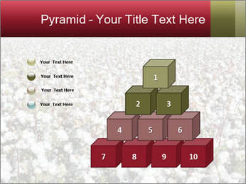 Fields of Cotton PowerPoint Template - Slide 31