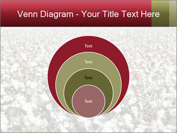 Fields of Cotton PowerPoint Template - Slide 34