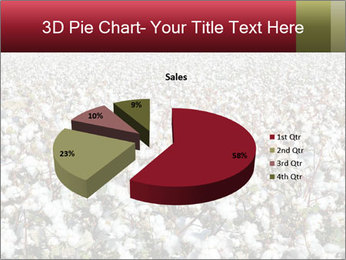 Fields of Cotton PowerPoint Template - Slide 35