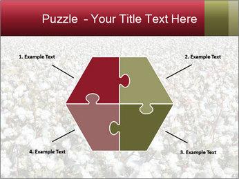 Fields of Cotton PowerPoint Template - Slide 40