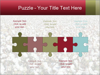 Fields of Cotton PowerPoint Template - Slide 41
