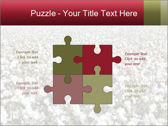 Fields of Cotton PowerPoint Template - Slide 43