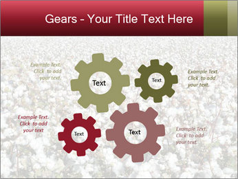 Fields of Cotton PowerPoint Template - Slide 47
