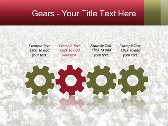 Fields of Cotton PowerPoint Template - Slide 48