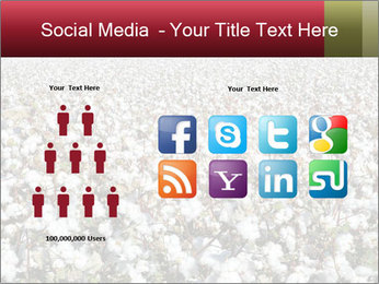 Fields of Cotton PowerPoint Template - Slide 5