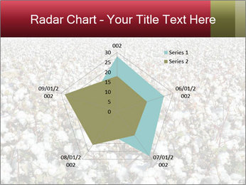 Fields of Cotton PowerPoint Template - Slide 51