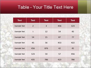 Fields of Cotton PowerPoint Template - Slide 55
