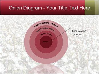 Fields of Cotton PowerPoint Template - Slide 61