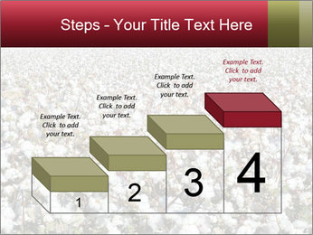 Fields of Cotton PowerPoint Template - Slide 64