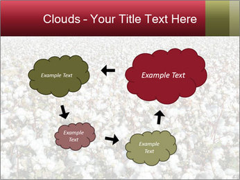 Fields of Cotton PowerPoint Template - Slide 72