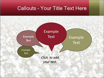 Fields of Cotton PowerPoint Template - Slide 73