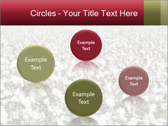 Fields of Cotton PowerPoint Template - Slide 77