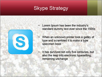 Fields of Cotton PowerPoint Template - Slide 8