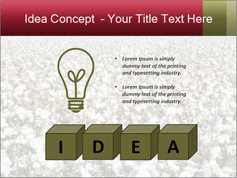 Fields of Cotton PowerPoint Template - Slide 80